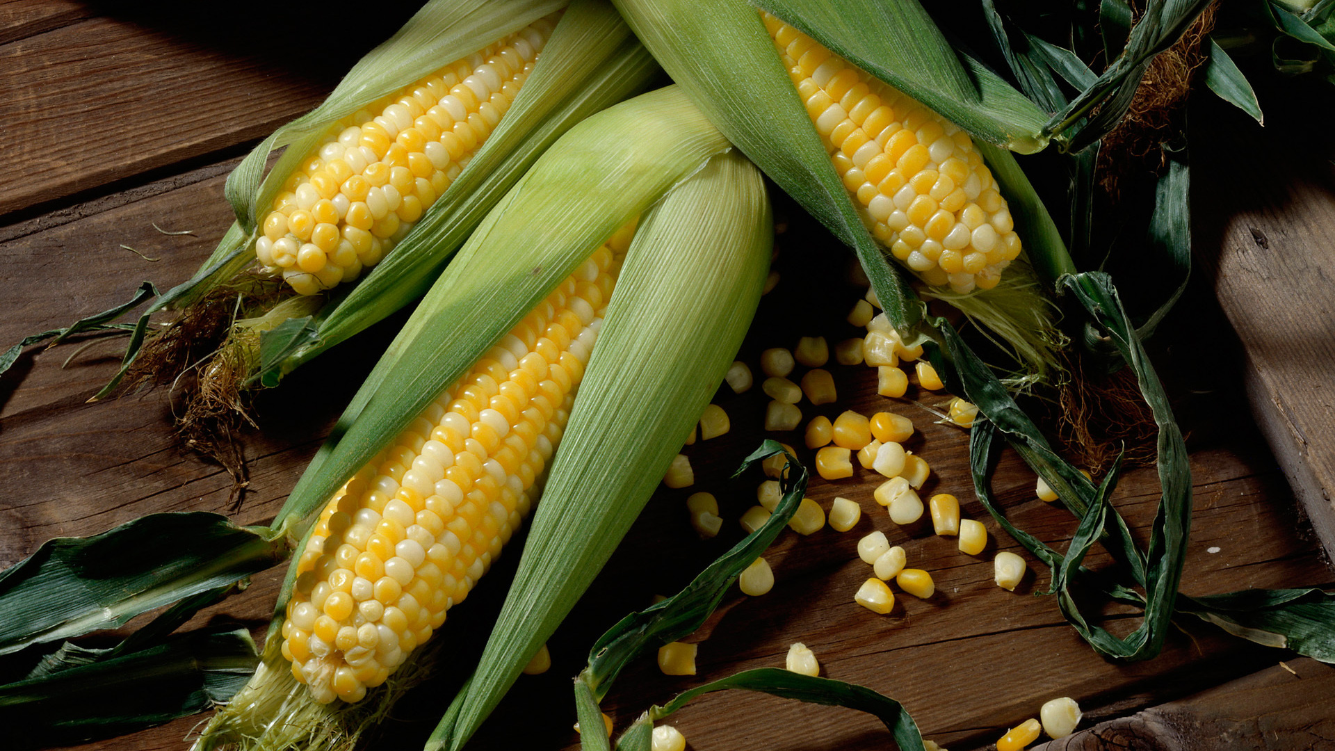 Corn Wave Analysis – 14 May, 2019