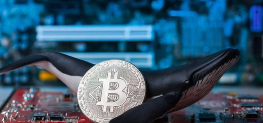 Bitcoin: Is it Too Late to Buy Bitcoin?