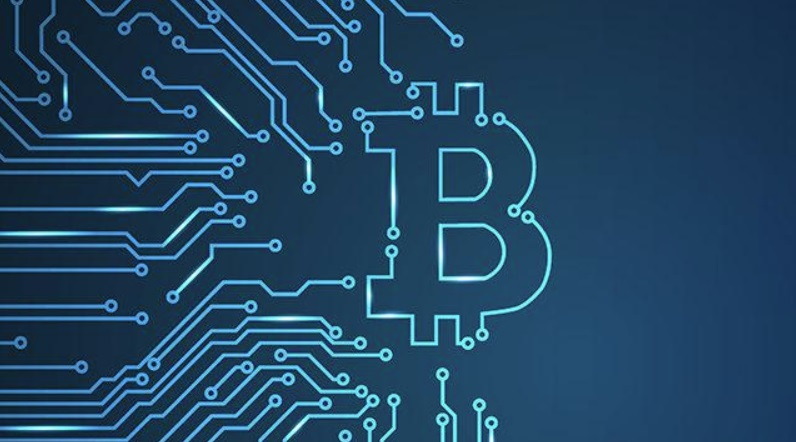 Bitcoin Is Not A Safe Haven Yet