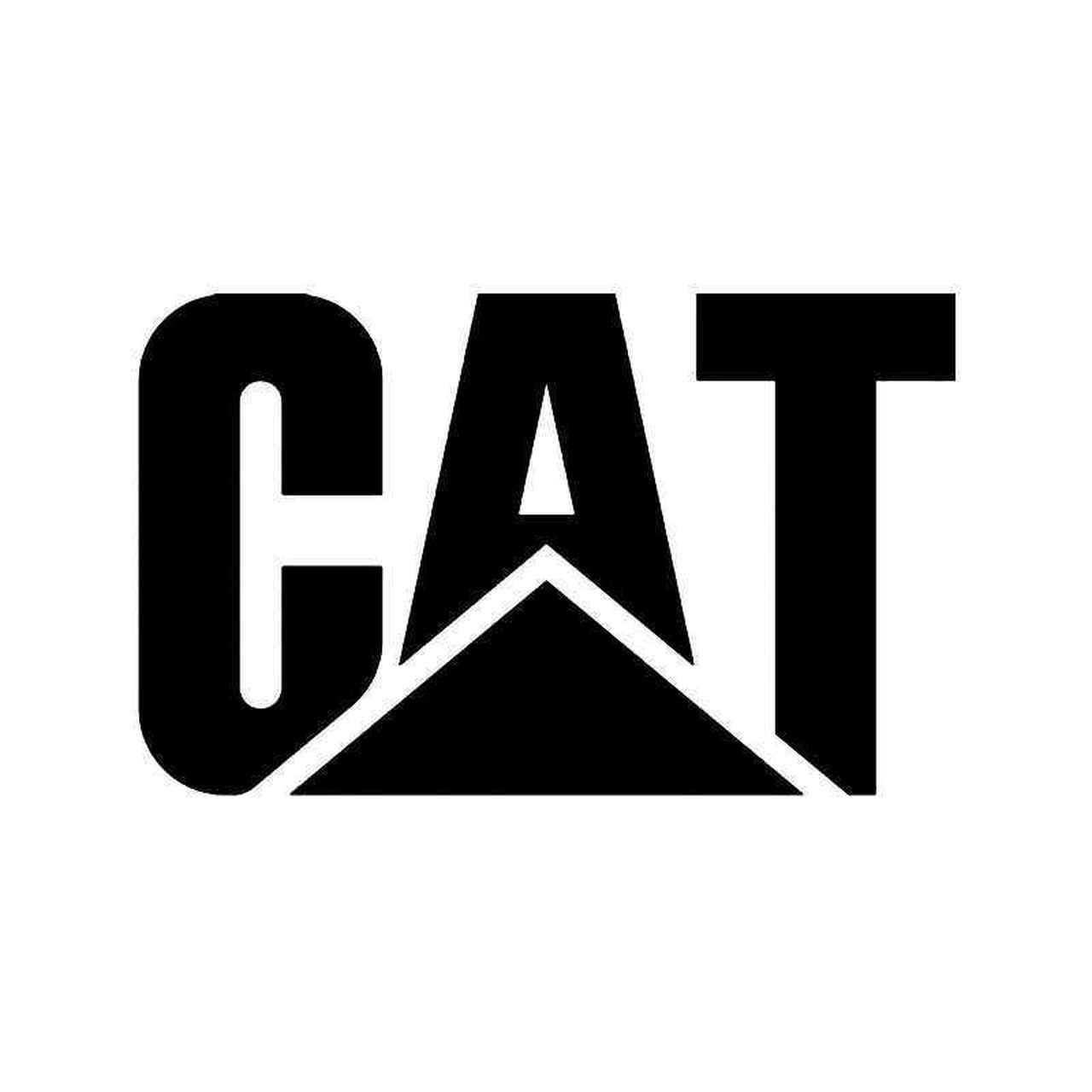 Catepillar Wave Analysis – 23 January, 2020