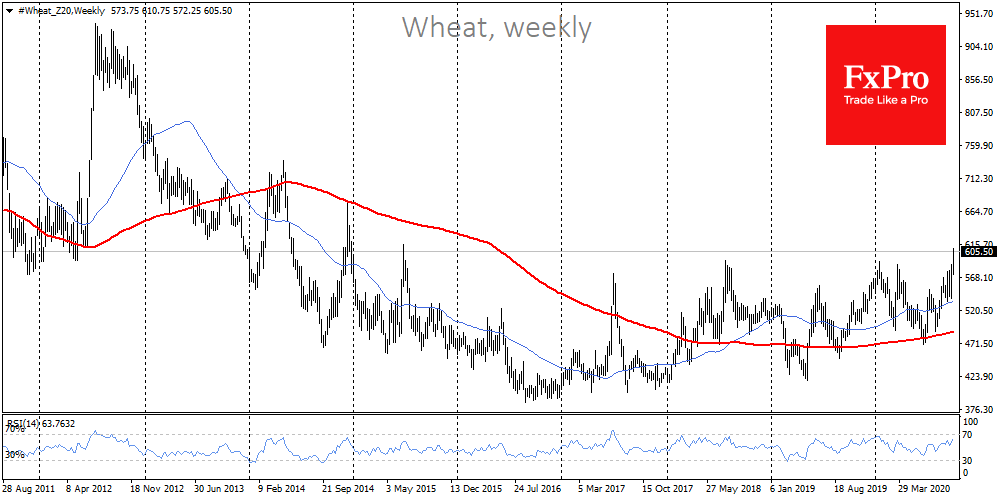 Wheat near 5-years high amid supply worries