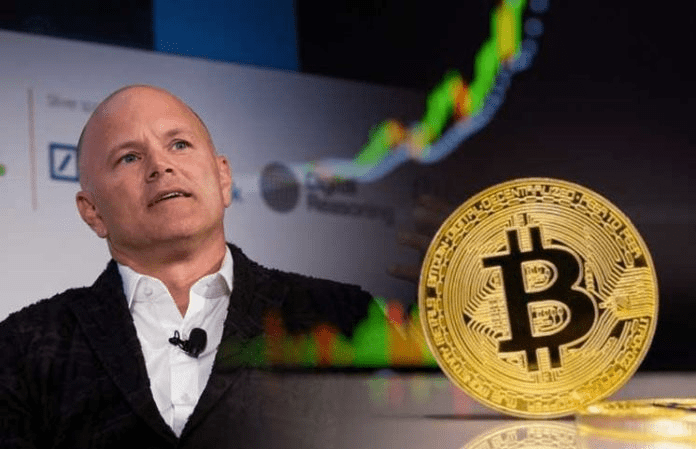'Everyone should put 2% to 3% of their net worth in bitcoin': Mike Novogratz